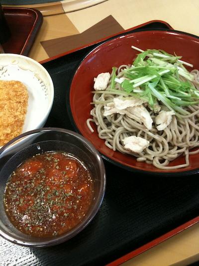 fuji20100606