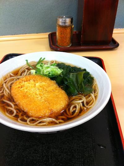 fuji20110301