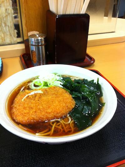 fuji20110423