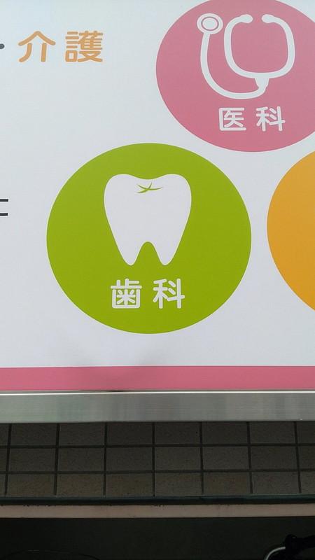 歯の中を飛ぶカモメ