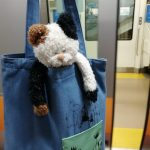 【ぬい撮り旅】終電で銭湯に行き始発で帰る