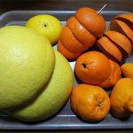 一番剥きやすい柑橘はどれだ!?【20種類計測】